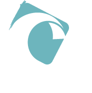 Feeling Kite – kitesurf Guadeloupe – cours et location - Ecole de kitesurf en Guadeloupe a Saint Anne – cours collectifs et particulier – stages kitesurf – de l'initiation au perfectionnement – coaching – foil – location de kite et downwind –